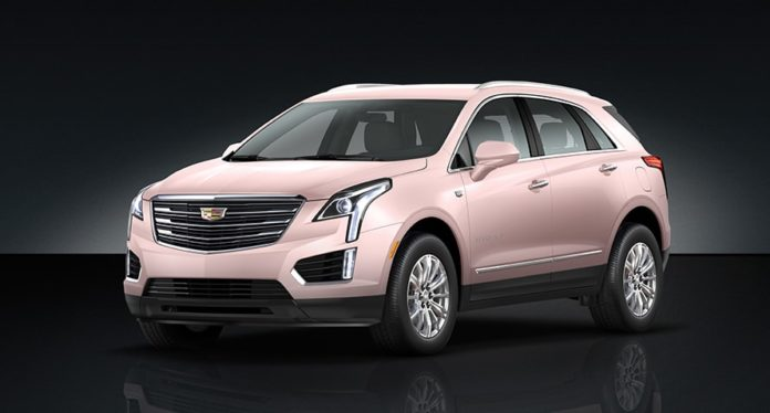 mary-kay-caddy-pink-890-2018